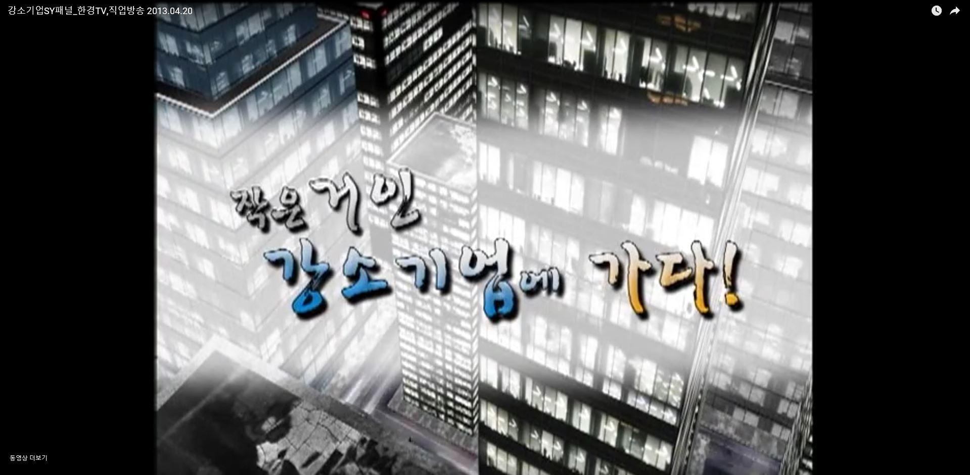 [TV방송]2013 한경TV 강소기업에 가다! '에스와이패널'편
